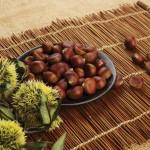 Những loại hạt phổ biến giúp phòng chống ung thư
