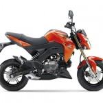 Xe môtô Kawasaki Z125 dáng đẹp giá siêu rẻ 45,8 triệu Đồng