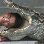 Biểu diễn xiếc cho đầu vào miệng cá sấu bị cắn thật