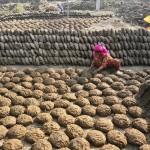 Chả phân bò món ăn đặc sản bán chạy tại Ấn Độ