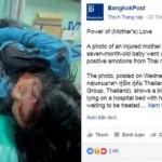 Nhiều người khóc khi xem ảnh mẹ bị tai nạn vẫn ôm, cho con bú