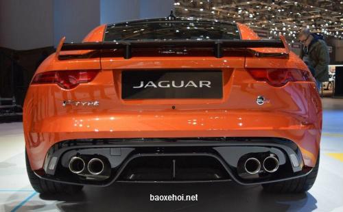1-anh-xe-jaguar