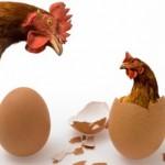 Đáp án đúng cho câu hỏi gà có trước hay trứng có trước