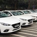 Xác định nguyên nhân chính của lỗi cá vàng xe Mazda3