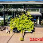 Mercedes An du ra mắt chương trình khuyến mại lớn
