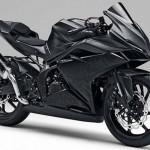 Xe hot Honda CBR250RR 2016 tung ảnh thực tế