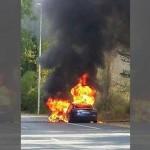 Thêm 1 vụ xe Tesla Model S bị bốc cháy khi đang chạy thử ?