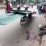 Hai người chết do tôn cứa cổ, yêu cầu siết xe thô sơ