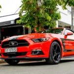 Ford Mustang bất ngờ tạm ngừng sản xuất ở Mỹ