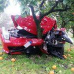 Siêu xe Ferrari 458 Italia nát đầu vì tông vào vườn cây cam