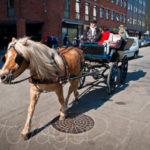 Những điều luật giao thông kỳ lạ nhất thế giới (phần 2)