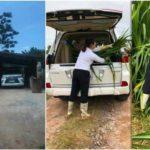 Thực hư về ảnh người nông dân chở cỏ bằng Lexus LX570 ?
