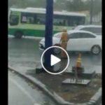 Xúc động Cảnh sát giao thông điều khiển phương tiện giữa trời mưa to ở Cát Lái