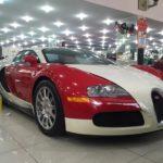 Ông Đặng Lê Nguyên Vũ mua Bugatti Veyron độc nhất Việt Nam