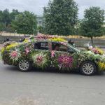 Choáng xe dâu trang trí nhiều hoa nhiều nhất Việt Nam