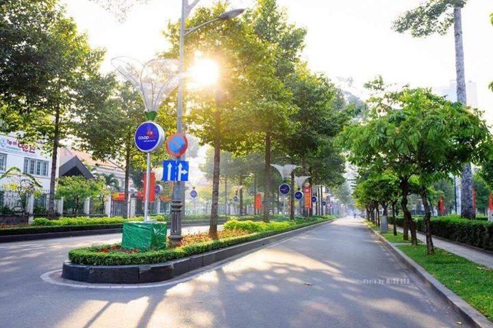 Đường phố Sài Gòn tết 2019