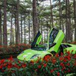 Siêu xe một thời đình đám Lamborghini Murcielago xanh cốm